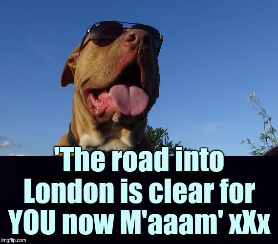 'The road into London is clear for YOU now M'aaam' xXx | image tagged in indiana jones punching nazis,diana,the queen,the great awakening,shitstorm | made w/ Imgflip meme maker