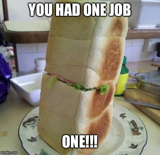 One job | YOU HAD ONE JOB ONE!!! | image tagged in funny | made w/ Imgflip meme maker