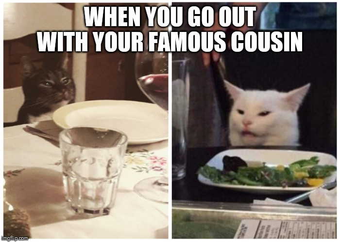 Cats and bliksem | WHEN YOU GO OUT WITH YOUR FAMOUS COUSIN | image tagged in cats and bliksem | made w/ Imgflip meme maker