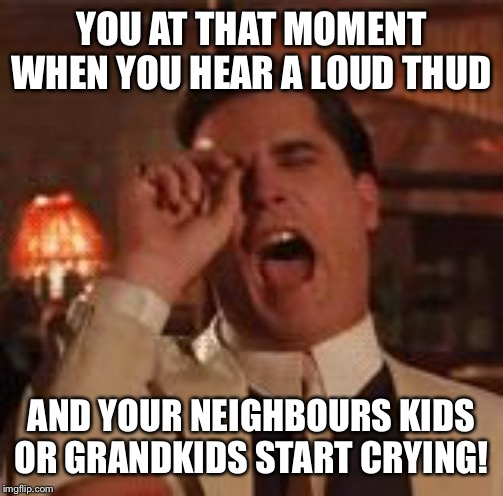 Laugh | YOU AT THAT MOMENT WHEN YOU HEAR A LOUD THUD AND YOUR NEIGHBOURS KIDS OR GRANDKIDS START CRYING! | image tagged in laugh | made w/ Imgflip meme maker
