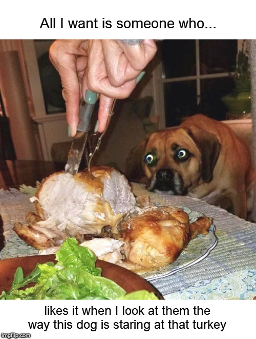 It's not creepy at all! | All I want is someone who... likes it when I look at them the way this dog is staring at that turkey | image tagged in memes,dog,food | made w/ Imgflip meme maker