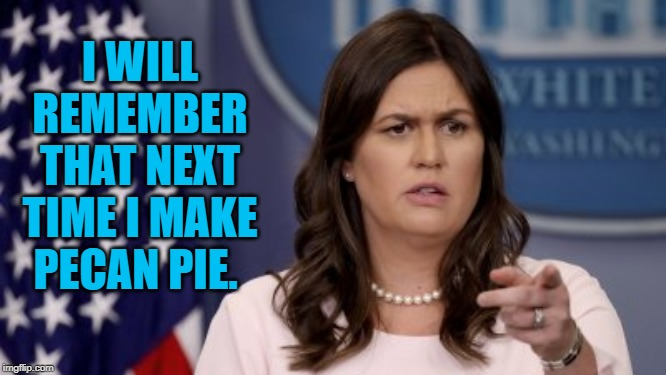 I WILL REMEMBER THAT NEXT TIME I MAKE PECAN PIE. | made w/ Imgflip meme maker