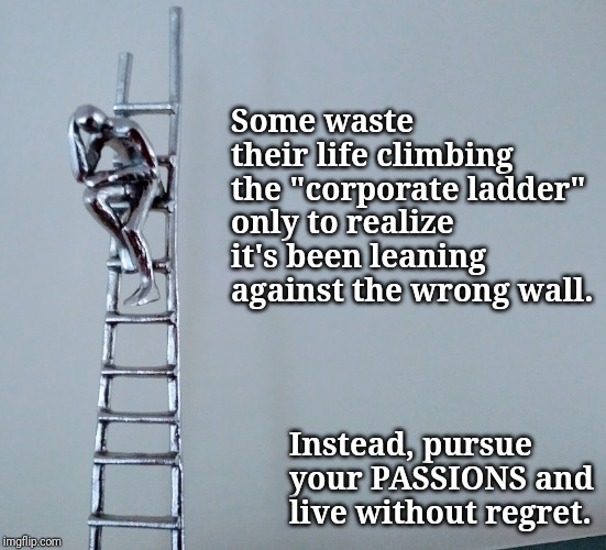 "Some waste their life climbing the ""corporate ladder"" only to realize it's been leaning against the wrong wall. Instead, pursue your PASSIONS and live without regret. 