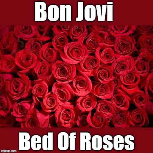 .•♫•♬• σиє σf му fανσяιтє ѕσиgѕ •♬•♫•. | Bon Jovi Bed Of Roses | image tagged in memes,music,bon jovi,bed of roses | made w/ Imgflip meme maker