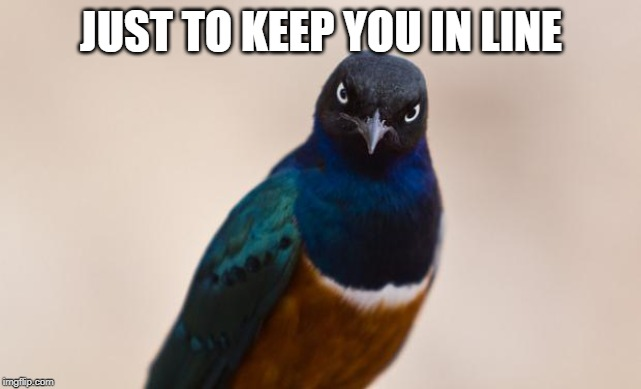 Evil Bird | JUST TO KEEP YOU IN LINE | image tagged in evil bird | made w/ Imgflip meme maker