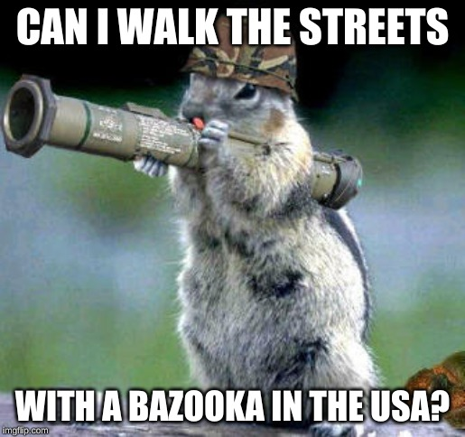 Bazooka Squirrel | CAN I WALK THE STREETS WITH A BAZOOKA IN THE USA? | image tagged in memes,bazooka squirrel | made w/ Imgflip meme maker