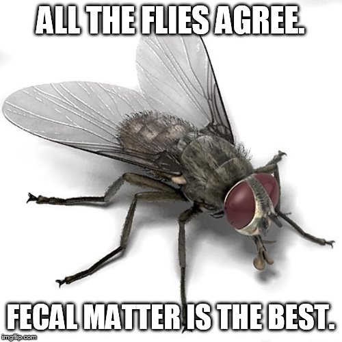 appeal to popularity | ALL THE FLIES AGREE. FECAL MATTER IS THE BEST. | image tagged in scumbag house fly | made w/ Imgflip meme maker