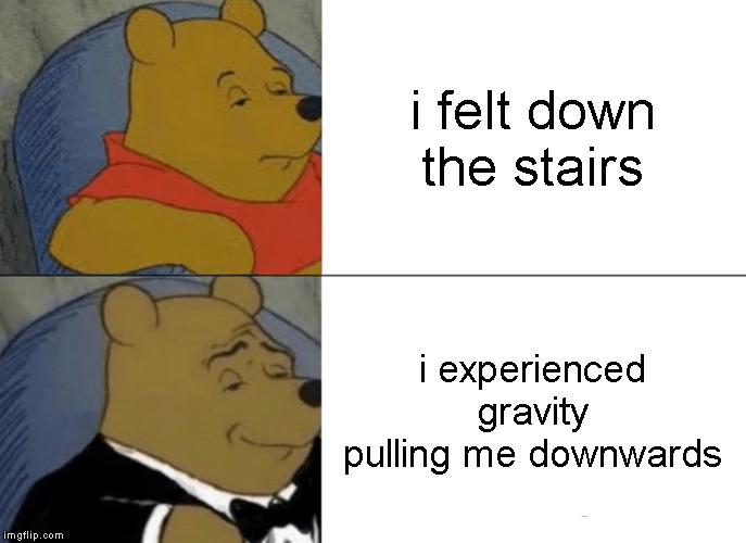 Tuxedo Winnie The Pooh Meme | i felt down the stairs i experienced gravity pulling me downwards | image tagged in memes,tuxedo winnie the pooh | made w/ Imgflip meme maker