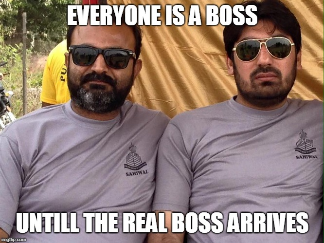 EVERYONE IS A BOSS UNTILL THE REAL BOSS ARRIVES | image tagged in funny memes | made w/ Imgflip meme maker