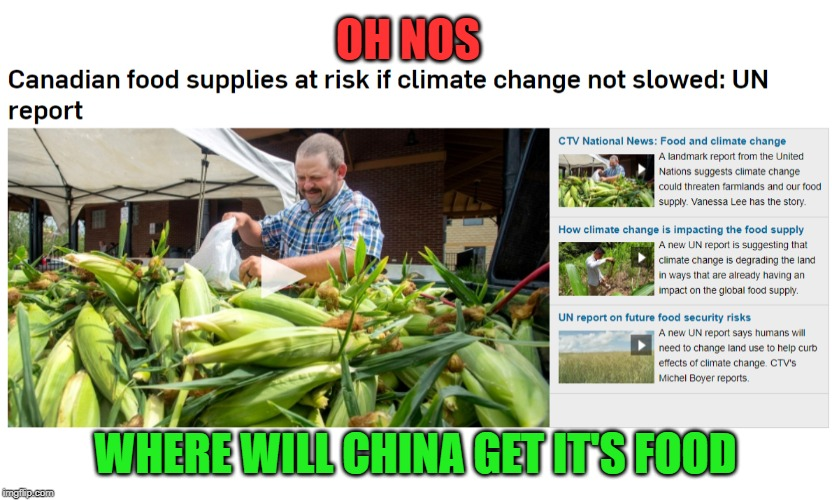 We have so much we sell it to other countries |  OH NOS; WHERE WILL CHINA GET IT'S FOOD | image tagged in chinese food,meanwhile in canada,united nations,idiots,conspiracy theory,climate change | made w/ Imgflip meme maker