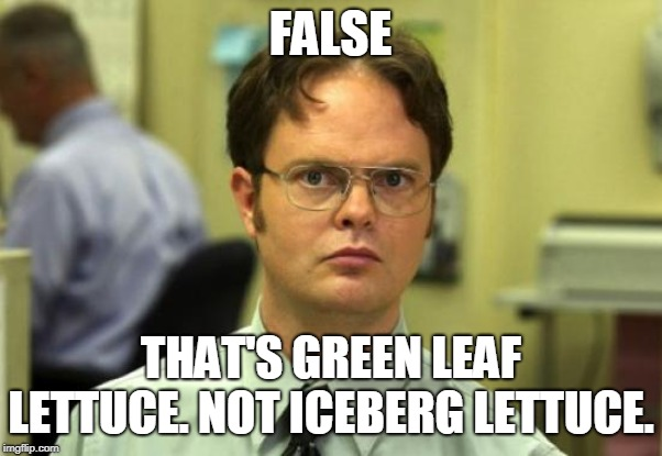 Dwight Schrute Meme | FALSE THAT'S GREEN LEAF LETTUCE. NOT ICEBERG LETTUCE. | image tagged in memes,dwight schrute | made w/ Imgflip meme maker