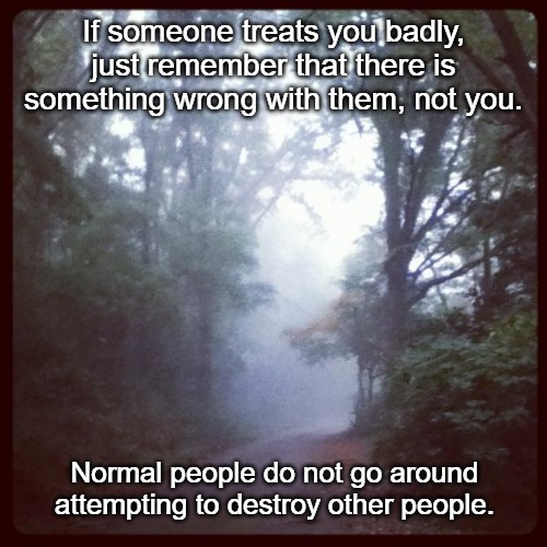 Peace  | If someone treats you badly, just remember that there is something wrong with them, not you. Normal people do not go around attempting to de | image tagged in peace | made w/ Imgflip meme maker