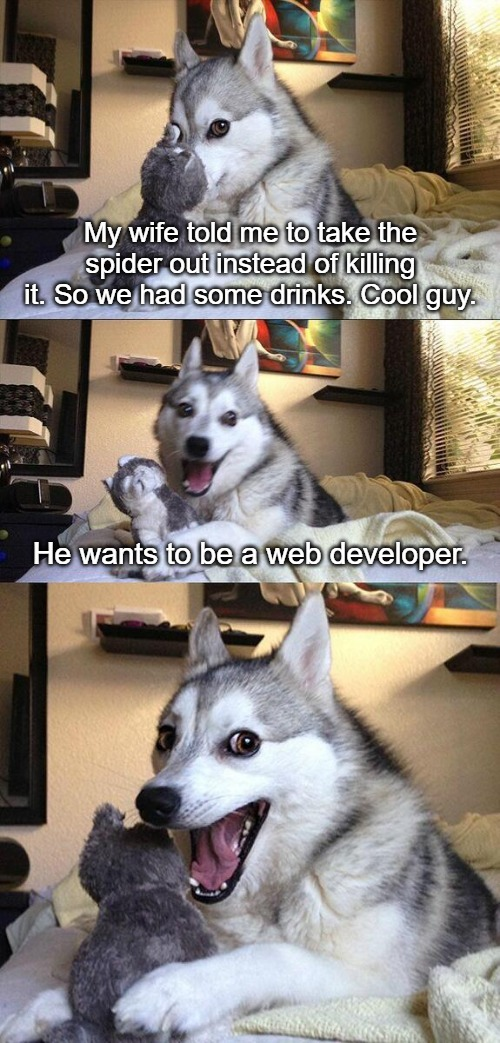 Bad Pun Dog |  My wife told me to take the spider out instead of killing it. So we had some drinks. Cool guy. He wants to be a web developer. | image tagged in memes,bad pun dog | made w/ Imgflip meme maker