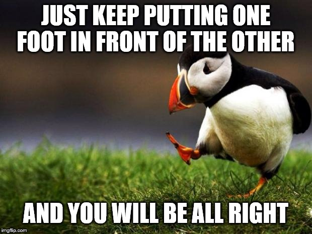 when times are hard | JUST KEEP PUTTING ONE FOOT IN FRONT OF THE OTHER AND YOU WILL BE ALL RIGHT | image tagged in memes | made w/ Imgflip meme maker