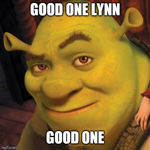 Shrek Sexy Face | GOOD ONE LYNN GOOD ONE | image tagged in shrek sexy face | made w/ Imgflip meme maker