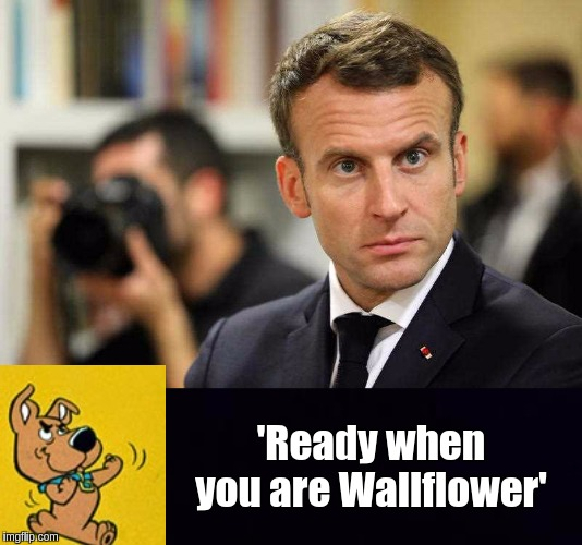 #AEuroPratt | 'Ready when you are Wallflower' | image tagged in emmanuel macron,eu,junior eurovision,european union,the great awakening | made w/ Imgflip meme maker