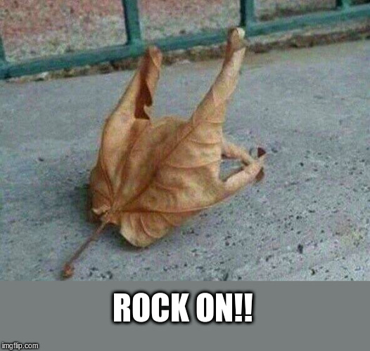 Rock and Roll Leaf | ROCK ON!! | image tagged in rock and roll,heavy metal,horns | made w/ Imgflip meme maker