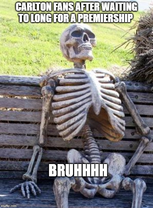 Carlton fans | CARLTON FANS AFTER WAITING TO LONG FOR A PREMIERSHIP BRUHHHH | image tagged in memes,waiting skeleton | made w/ Imgflip meme maker