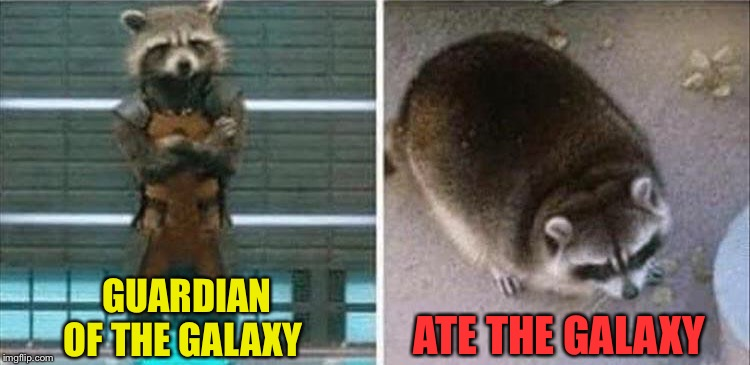 He's almost as bad as Thanos. |  GUARDIAN OF THE GALAXY; ATE THE GALAXY | image tagged in guardians of the galaxy,raccoon,memes,funny | made w/ Imgflip meme maker