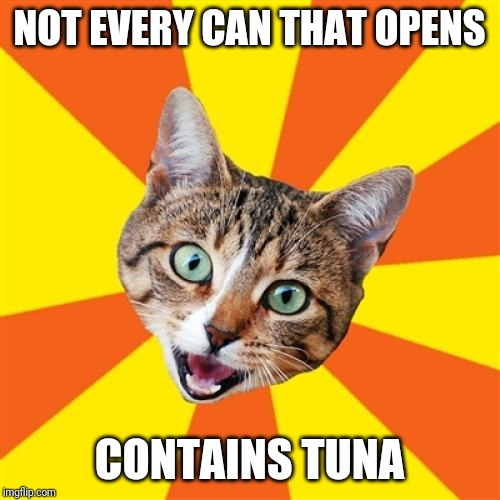 But it should! | NOT EVERY CAN THAT OPENS CONTAINS TUNA | image tagged in memes,bad advice cat,tuna,cat,pavlov | made w/ Imgflip meme maker