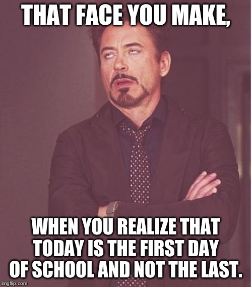 Face You Make Robert Downey Jr Meme | THAT FACE YOU MAKE, WHEN YOU REALIZE THAT TODAY IS THE FIRST DAY OF SCHOOL AND NOT THE LAST. | image tagged in memes,face you make robert downey jr | made w/ Imgflip meme maker