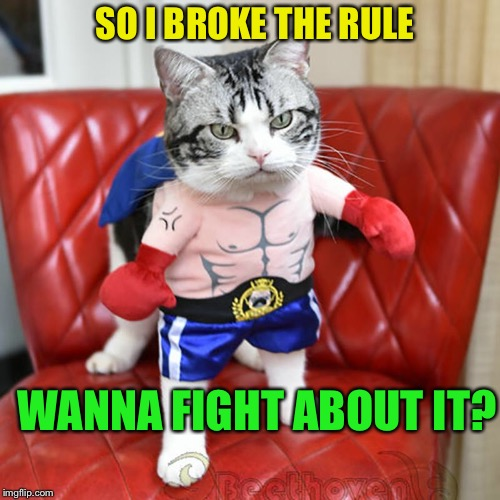 SO I BROKE THE RULE WANNA FIGHT ABOUT IT? | made w/ Imgflip meme maker