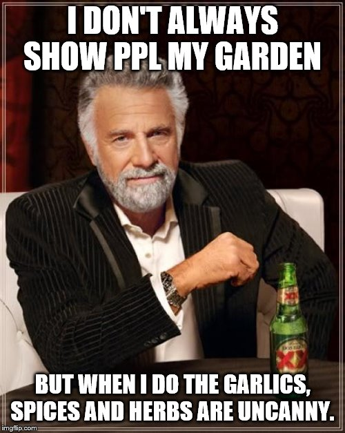 The Most Interesting Man In The World | I DON'T ALWAYS SHOW PPL MY GARDEN BUT WHEN I DO THE GARLICS, SPICES AND HERBS ARE UNCANNY. | image tagged in memes,the most interesting man in the world | made w/ Imgflip meme maker