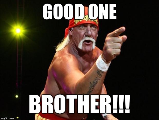 Hulk Hogan | GOOD ONE BROTHER!!! | image tagged in hulk hogan | made w/ Imgflip meme maker