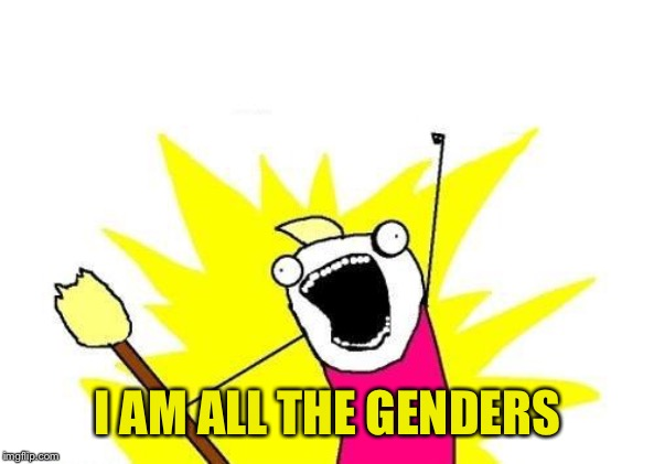 X All The Y Meme | I AM ALL THE GENDERS | image tagged in memes,x all the y | made w/ Imgflip meme maker