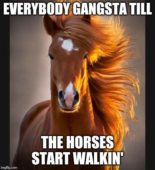 horse Memes & GIFs - Imgflip