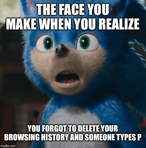 Sonic's been looking at booties! | THE FACE YOU MAKE WHEN YOU REALIZE YOU FORGOT TO DELETE YOUR BROWSING HISTORY AND SOMEONE TYPES P | image tagged in sonic movie,uh oh,computers,browser history,that face you make when,paramount | made w/ Imgflip meme maker