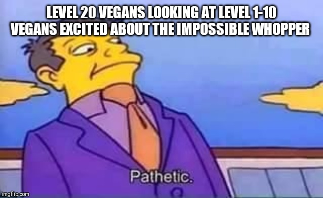 LEVEL 20 VEGANS LOOKING AT LEVEL 1-10 VEGANS EXCITED ABOUT THE IMPOSSIBLE WHOPPER | image tagged in skinner pathetic | made w/ Imgflip meme maker