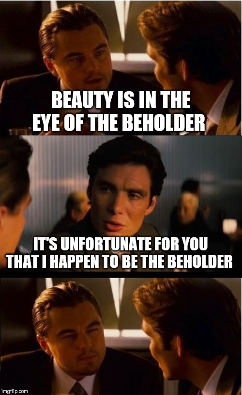 Inception Meme | BEAUTY IS IN THE EYE OF THE BEHOLDER IT'S UNFORTUNATE FOR YOU THAT I HAPPEN TO BE THE BEHOLDER | image tagged in memes,inception | made w/ Imgflip meme maker