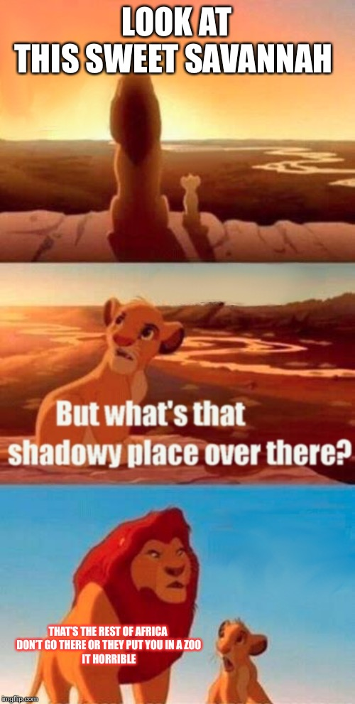 Simba Shadowy Place Meme | LOOK ATTHIS SWEET SAVANNAH THAT'S THE REST OF AFRICA DON'T GO THERE OR THEY PUT YOU IN A ZOOIT HORRIBLE | image tagged in memes,simba shadowy place | made w/ Imgflip meme maker