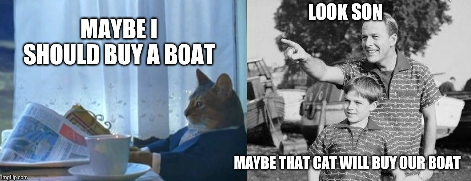 LOOK SON MAYBE THAT CAT WILL BUY OUR BOAT MAYBE I SHOULD BUY A BOAT | image tagged in memes,i should buy a boat cat,look son | made w/ Imgflip meme maker