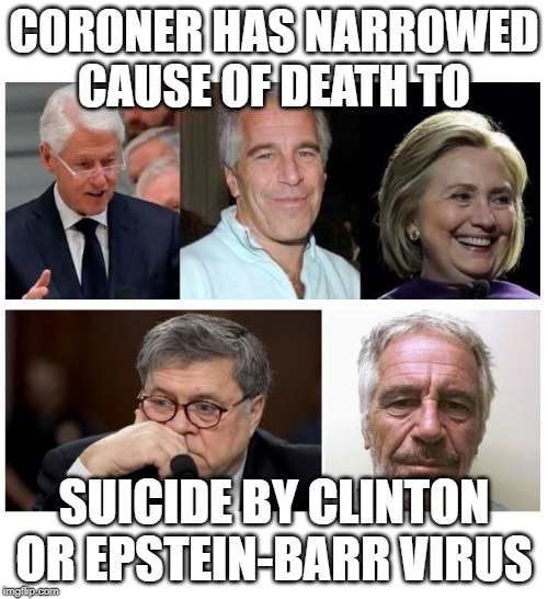Image result for epstein barr suicide