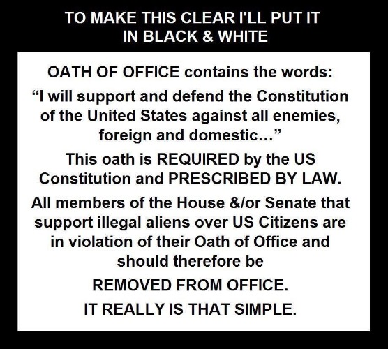 Malfeasance: REMOVE them from office! | image tagged in oath,us constitution,oath violation,congress,sedition,subversion | made w/ Imgflip meme maker