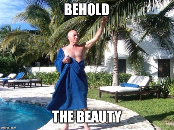 Behold Sir Patrick Stewart | BEHOLD THE BEAUTY | image tagged in behold sir patrick stewart | made w/ Imgflip meme maker