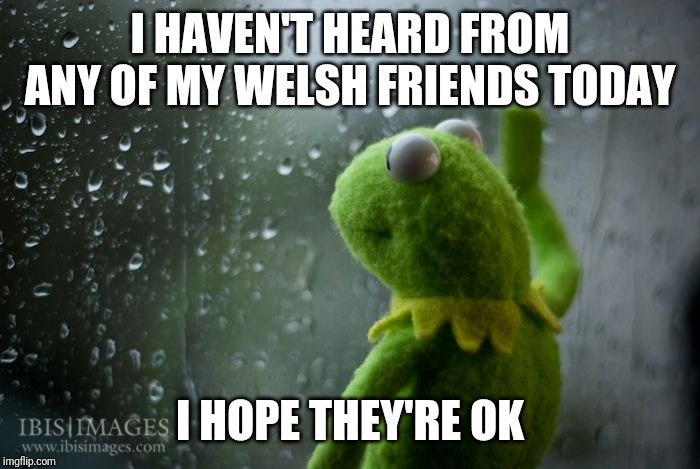 kermit window | I HAVEN'T HEARD FROM ANY OF MY WELSH FRIENDS TODAY I HOPE THEY'RE OK | image tagged in kermit window | made w/ Imgflip meme maker