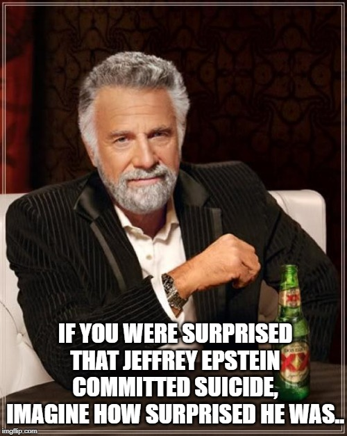 The Most Interesting Man In The World Meme | IF YOU WERE SURPRISED THAT JEFFREY EPSTEIN COMMITTED SUICIDE, IMAGINE HOW SURPRISED HE WAS.. | image tagged in memes,the most interesting man in the world | made w/ Imgflip meme maker