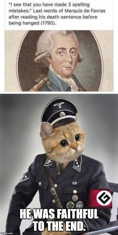 Grammar Nazis unite! |  HE WAS FAITHFUL TO THE END. | image tagged in grammar nazi cat,funny,funny memes | made w/ Imgflip meme maker