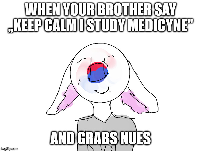 south korea |  WHEN YOUR BROTHER SAY ,,KEEP CALM I STUDY MEDICYNE''; AND GRABS NUES | image tagged in south korea | made w/ Imgflip meme maker