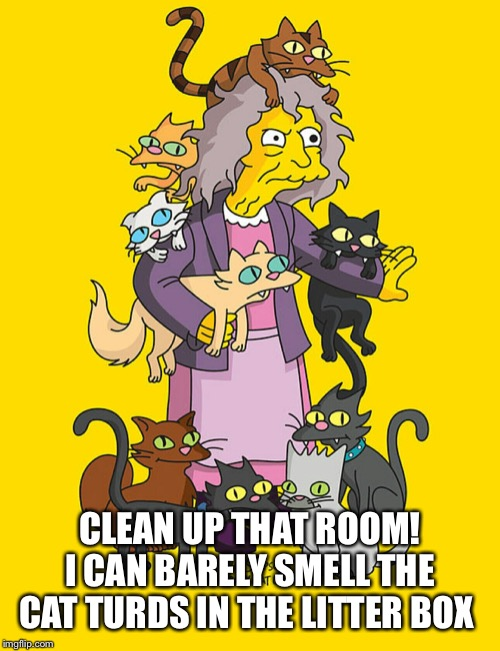 Crazy Cat Lady | CLEAN UP THAT ROOM! I CAN BARELY SMELL THE CAT TURDS IN THE LITTER BOX | image tagged in crazy cat lady | made w/ Imgflip meme maker