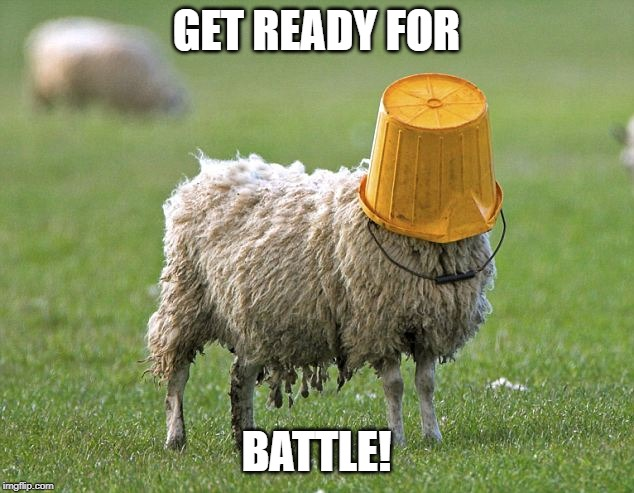 stupid sheep | GET READY FOR BATTLE! | image tagged in stupid sheep | made w/ Imgflip meme maker