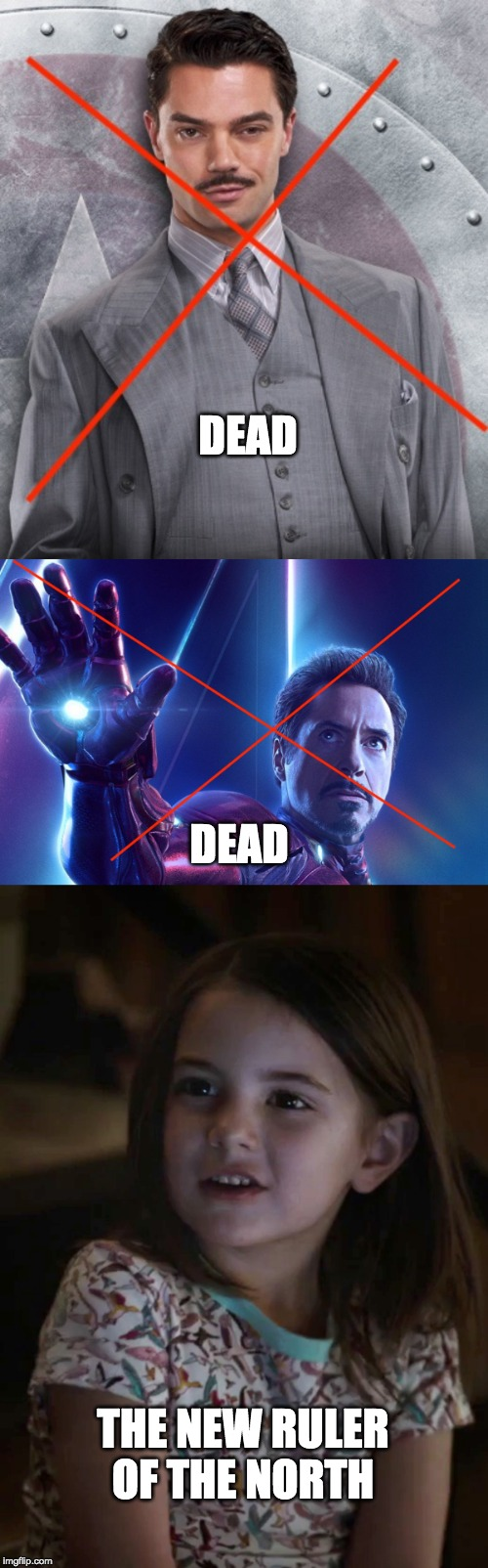 The Tragedy of the Starks | DEAD DEAD THE NEW RULER OF THE NORTH | image tagged in iron man,tony stark,marvel,game of thrones | made w/ Imgflip meme maker