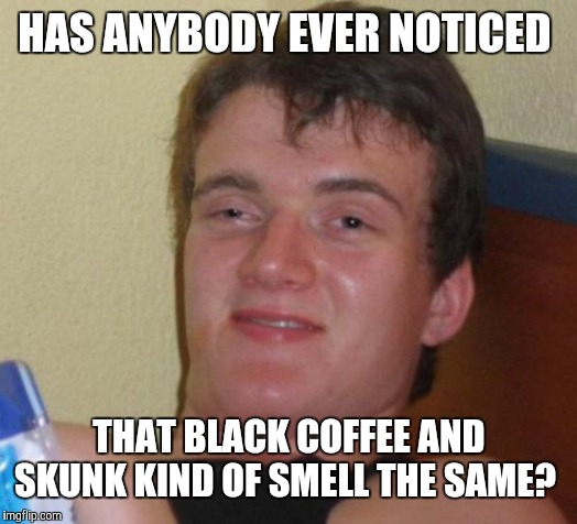Apologies to any coffee lovers who see this. | HAS ANYBODY EVER NOTICED THAT BLACK COFFEE AND SKUNK KIND OF SMELL THE SAME? | image tagged in memes,10 guy,coffee,skunk,smells | made w/ Imgflip meme maker