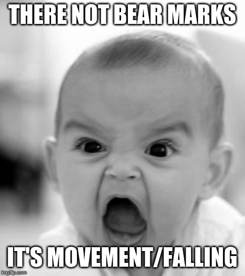 Angry Baby Meme | THERE NOT BEAR MARKS IT'S MOVEMENT/FALLING | image tagged in memes,angry baby | made w/ Imgflip meme maker