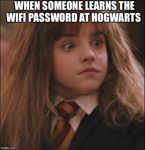 the face you make when someone says they hate harry potter | WHEN SOMEONE LEARNS THE WIFI PASSWORD AT HOGWARTS | image tagged in the face you make when someone says they hate harry potter | made w/ Imgflip meme maker