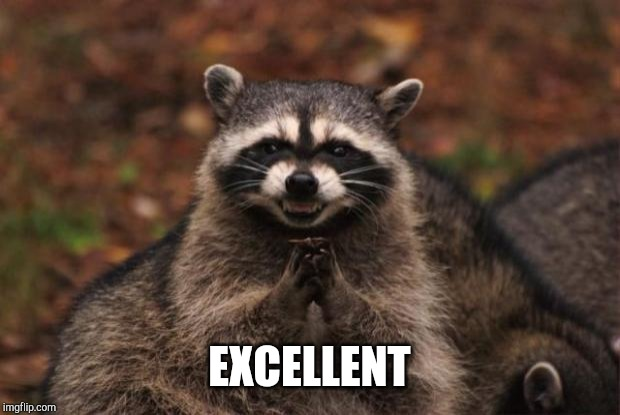 evil genius racoon | EXCELLENT | image tagged in evil genius racoon | made w/ Imgflip meme maker