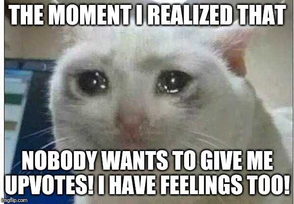 I'm sad | THE MOMENT I REALIZED THAT NOBODY WANTS TO GIVE ME UPVOTES! I HAVE FEELINGS TOO! | image tagged in crying cat | made w/ Imgflip meme maker